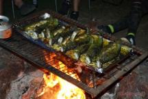 Opékání pstruhů na ohništi...